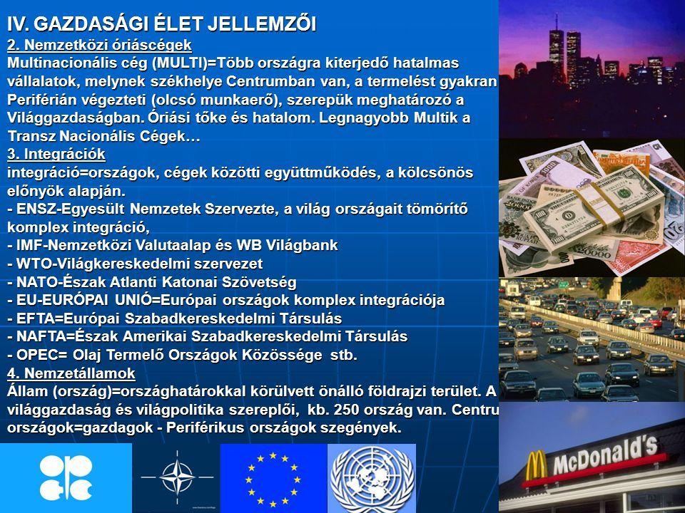 IV. GAZDASÁGI ÉLET JELLEMZŐI 2. Nemzetközi óriáscégek Multinacionális cég (MULTI)=Több országra kiterjedő hatalmas vállalatok, melynek székhelye Centr