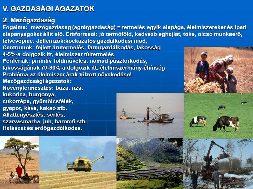 V. GAZDASÁGI ÁGAZATOK 2. Mezőgazdaság Fogalma: mezőgazdaság (agrárgazdaság) = termelés egyik alapága, élelmiszereket és ipari alapanyagokat állít elő.