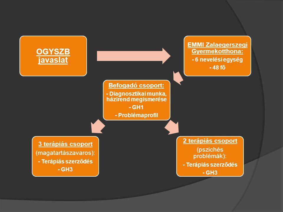 OGYSZB javaslat EMMI Zalaegerszegi Gyermekotthona: - 6 nevelési egység - 48 fő Befogadó csoport: - Diagnosztikai munka, házirend megismerése - GH1 - P