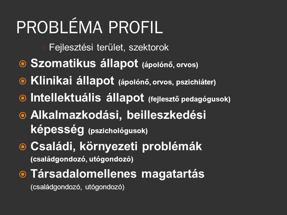PROBLÉMA PROFIL ○ Fejlesztési terület, szektorok  Szomatikus állapot (ápolónő, orvos)  Klinikai állapot (ápolónő, orvos, pszichiáter)  Intellektuál