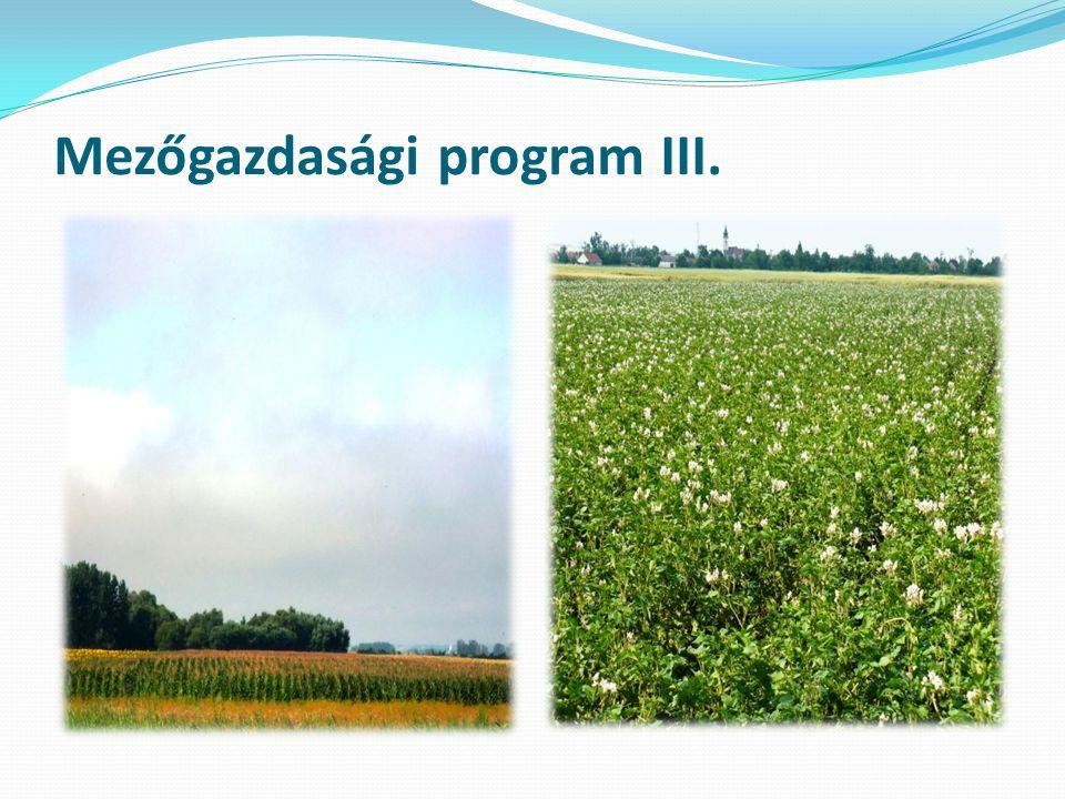 Mezőgazdasági program IV.