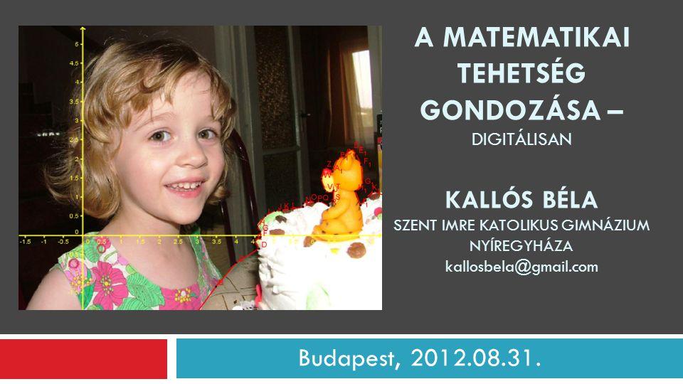 """A matematikai tehetséggondozás digitális formái  Szakmai blogok  Online nyári matematikaszakkör  Online """"tanóra (wiziq.com)  Internetes versenyek  Matematikai """"szoftverek használata 3"""