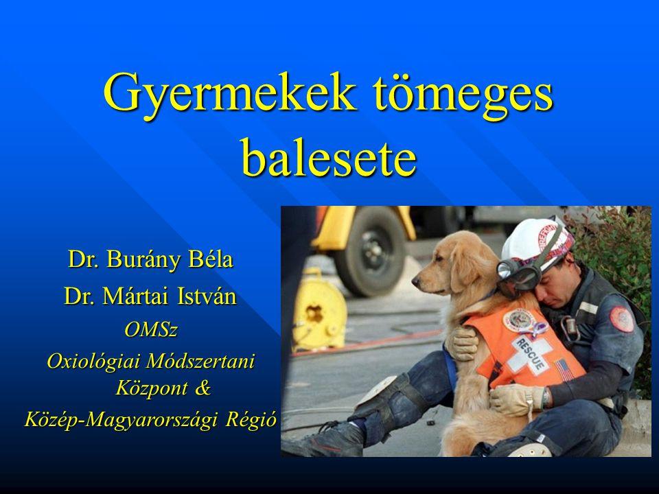 Gyermekek tömeges balesete Dr.Burány Béla Dr.