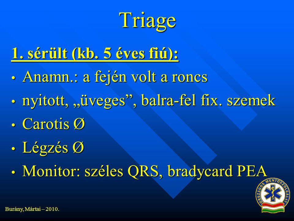 Burány, Mártai – 2010.Triage 1. sérült (kb.