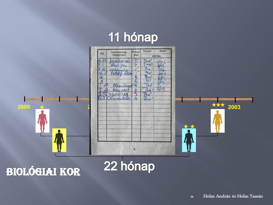 200120002002 2003  Helm András és Helm Tamás