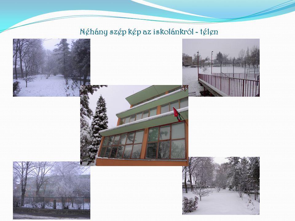 Néhány szép kép az iskolánkról - télen