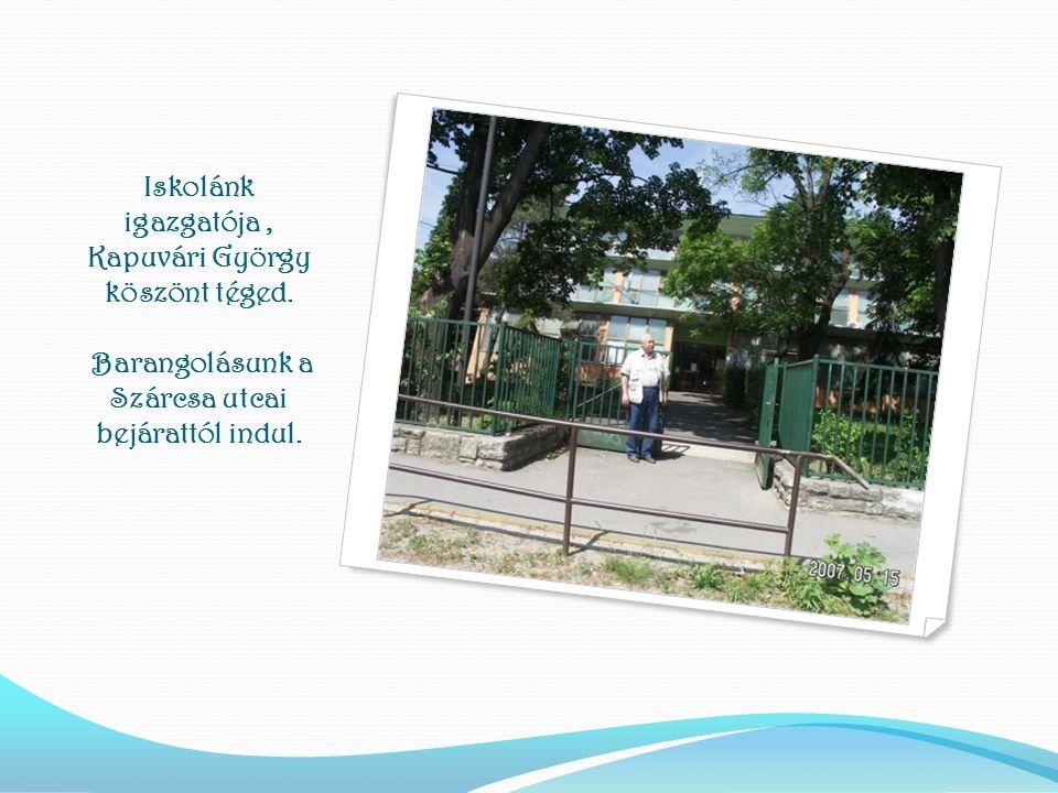 VÉGE. A bemutatót készítette: Gladkov Hajnalka Ha még nem találkoztunk, szívesen várunk iskolánkban
