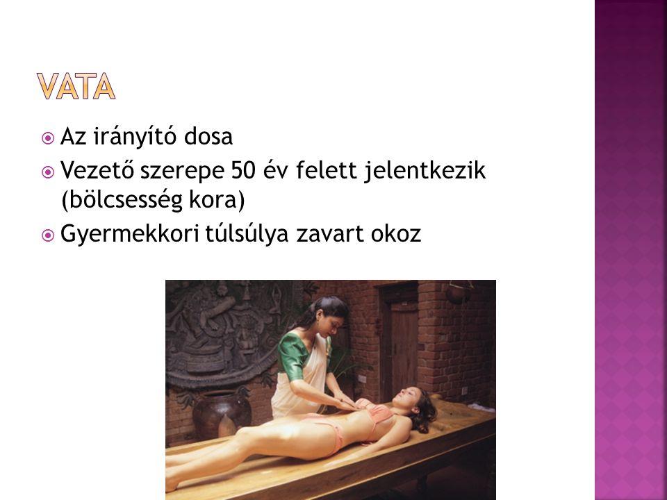  Az irányító dosa  Vezető szerepe 50 év felett jelentkezik (bölcsesség kora)  Gyermekkori túlsúlya zavart okoz