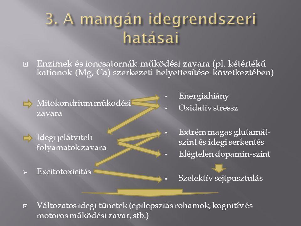  Enzimek és ioncsatornák működési zavara (pl.