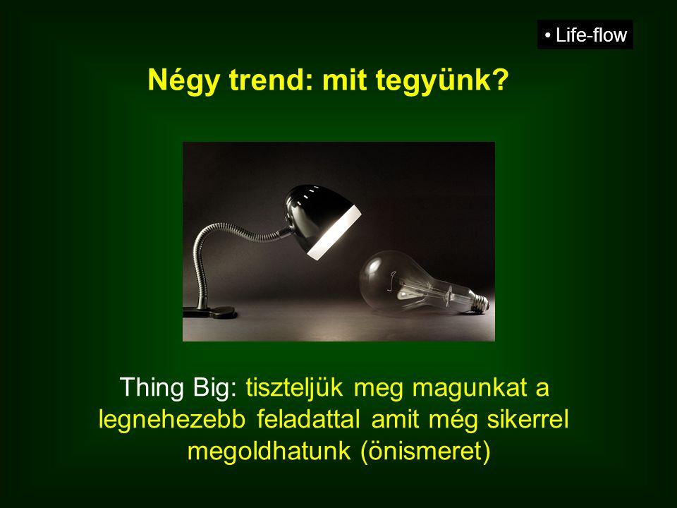 Thing Big: tiszteljük meg magunkat a legnehezebb feladattal amit még sikerrel megoldhatunk (önismeret) • Life-flow Négy trend: mit tegyünk?