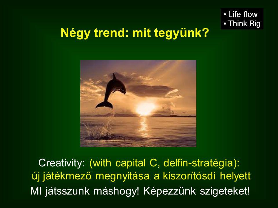 Creativity: (with capital C, delfin-stratégia): új játékmező megnyitása a kiszorítósdi helyett • Life-flow • Think Big Négy trend: mit tegyünk.