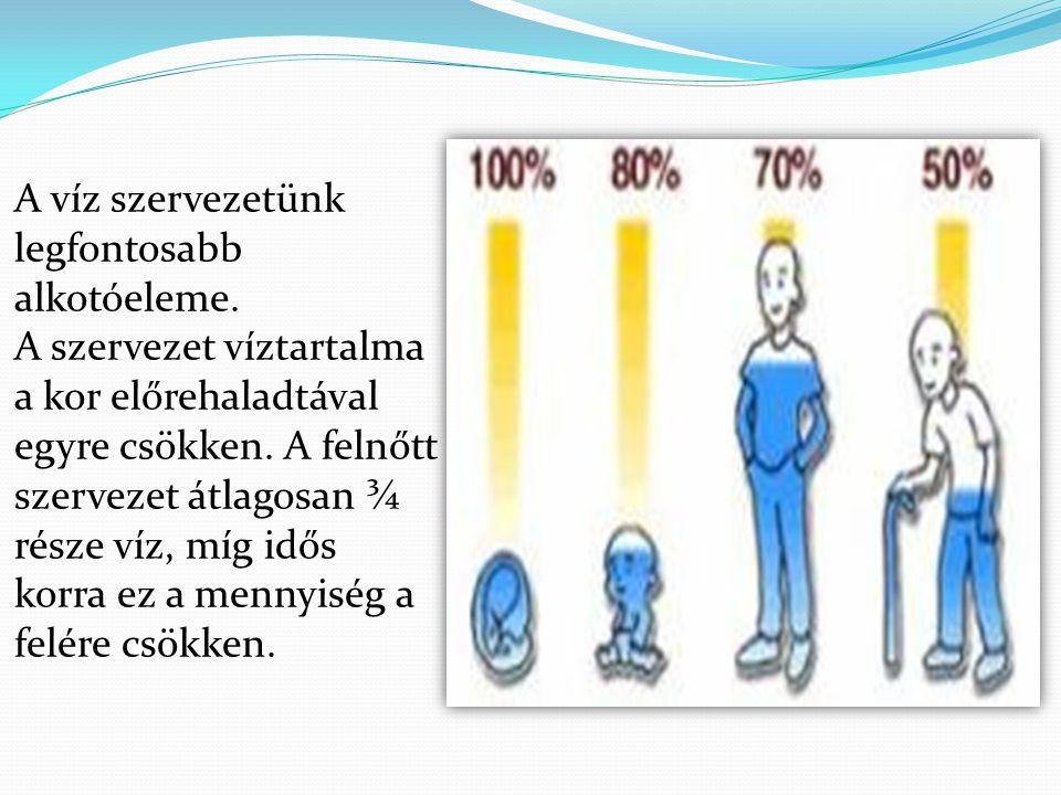 A víz szervezetünk legfontosabb alkotóeleme. A szervezet víztartalma a kor előrehaladtával egyre csökken. A felnőtt szervezet átlagosan ¾ része víz, m