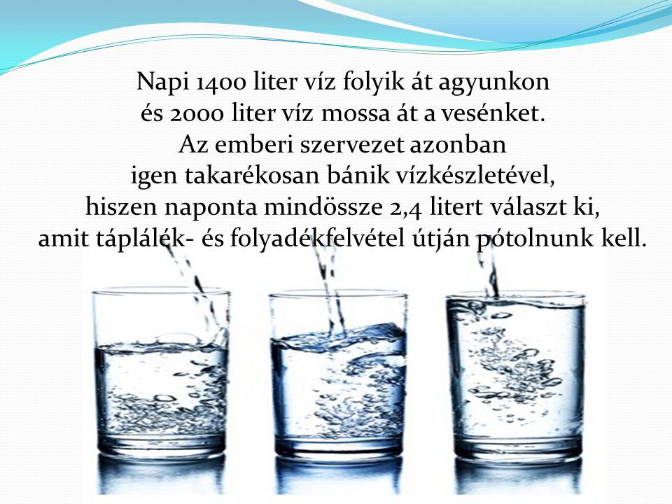 Napi 1400 liter víz folyik át agyunkon és 2000 liter víz mossa át a vesénket. Az emberi szervezet azonban igen takarékosan bánik vízkészletével, hisze