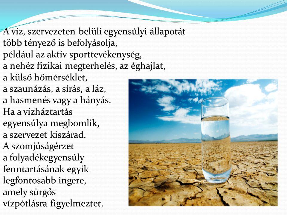 A víz, szervezeten belüli egyensúlyi állapotát több tényező is befolyásolja, például az aktív sporttevékenység, a nehéz fizikai megterhelés, az éghajl
