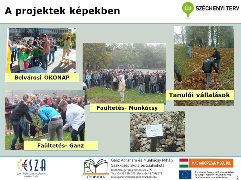23 A projektek képekben Belvárosi ÖKONAP Tanulói vállalások Faültetés- Munkácsy Faültetés- Ganz