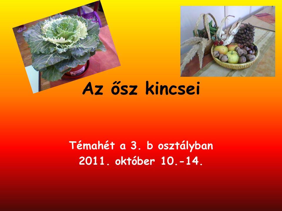 Bevezetés 2011.októberében iskolánk alsó tagozatán megrendezésre került az őszi témahét.