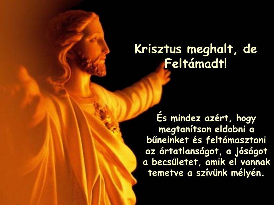 Jézus kérlek jöjj, bocsásd meg bűneimet, tölts el szereteteddel, és add meg nekem az örök élet ajándékát.