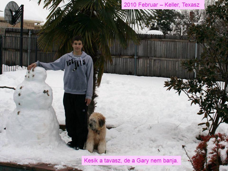 2010 Februar – Keller, Texasz Kesik a tavasz, de a Gary nem banja.