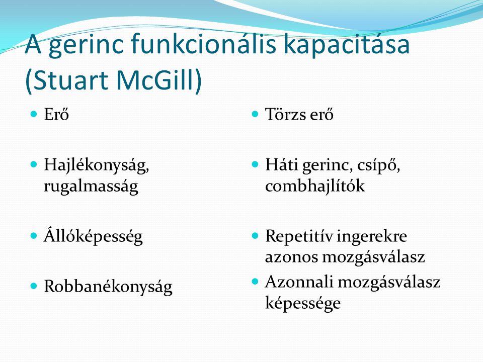 A gerinc funkcionális kapacitása (Stuart McGill)  Erő  Hajlékonyság, rugalmasság  Állóképesség  Robbanékonyság  Törzs erő  Háti gerinc, csípő, c