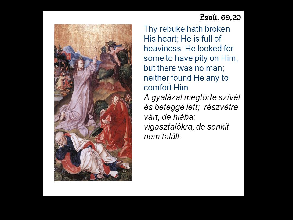 Zsolt. 69,20 Thy rebuke hath broken His heart; He is full of heaviness: He looked for some to have pity on Him, but there was no man; neither found He