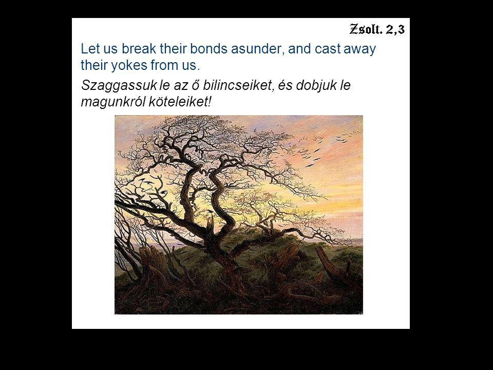 Zsolt. 2,3 Let us break their bonds asunder, and cast away their yokes from us.