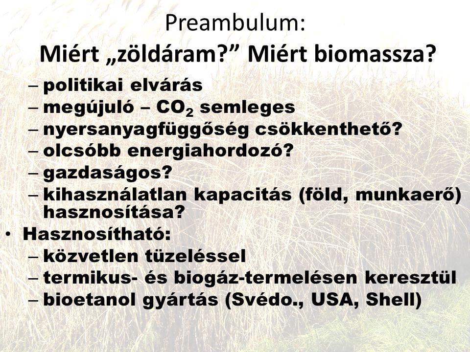 """Preambulum: Miért """"zöldáram? Miért biomassza."""