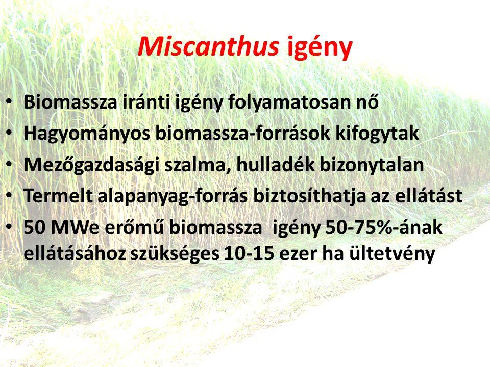 Miscanthus igény • Biomassza iránti igény folyamatosan nő • Hagyományos biomassza-források kifogytak • Mezőgazdasági szalma, hulladék bizonytalan • Termelt alapanyag-forrás biztosíthatja az ellátást • 50 MWe erőmű biomassza igény 50-75%-ának ellátásához szükséges 10-15 ezer ha ültetvény
