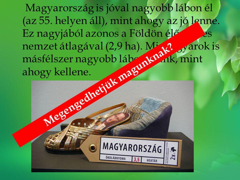 Magyarország is jóval nagyobb lábon él (az 55. helyen áll), mint ahogy az jó lenne. Ez nagyjából azonos a Földön élő összes nemzet átlagával (2,9 ha).