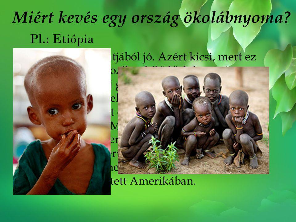 Miért kevés egy ország ökolábnyoma? Pl.: Etiópia Ez a Föld szempontjából jó. Azért kicsi, mert ez az ország nem tartozik a fejlődőek közé. A fejlődő o