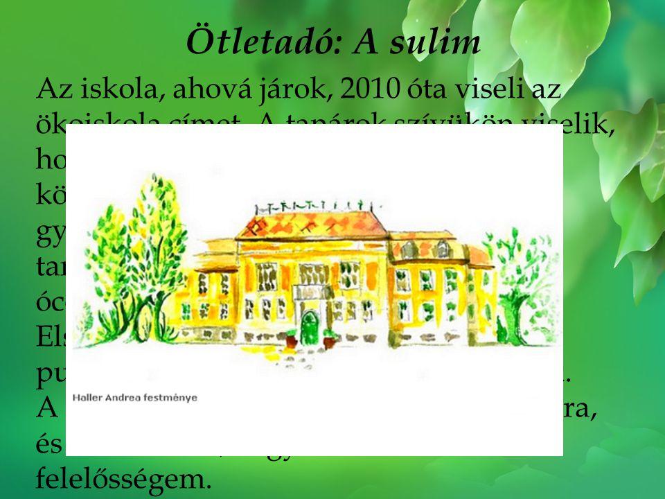 Ötletadó: A sulim Az iskola, ahová járok, 2010 óta viseli az ökoiskola címet. A tanárok szívükön viselik, hogy mi diákok sokat tudjunk a környezetvéde