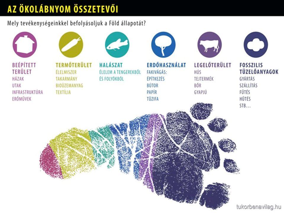 Ökológiai lábnyom országonként