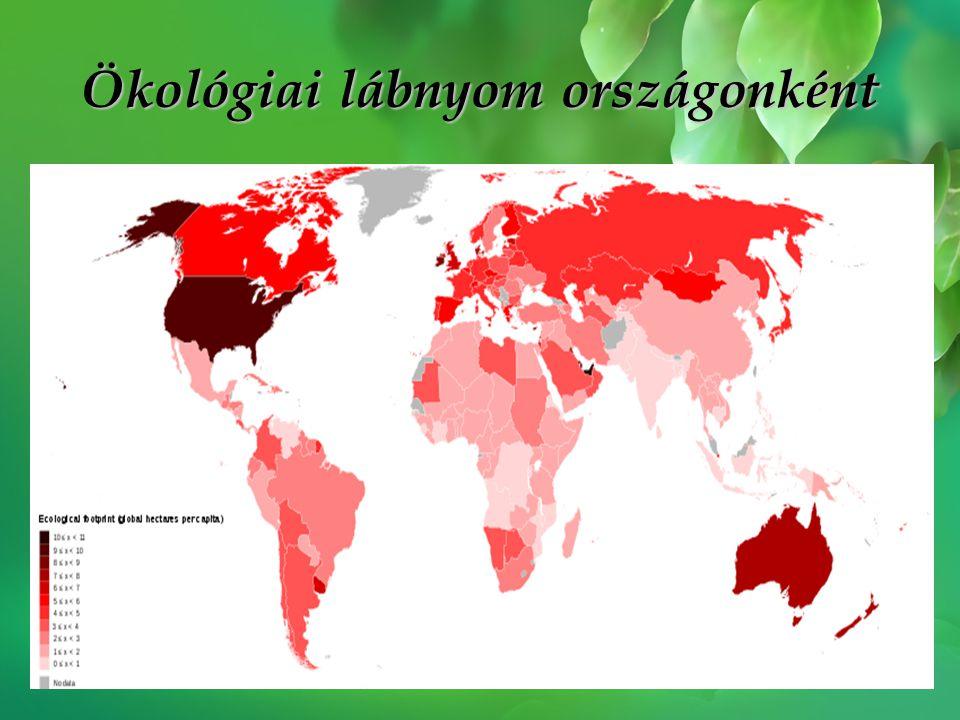 A tíz legnagyobb ökológiailag lábnyommal rendelkező ország (2004) •Amerikai Egyesült Államok: 9,57 ha •Egyesült Arab Emirátusok: 8,97 ha •Kanada: 8,56 ha •Norvégia: 8,17 ha •Új-Zéland: 8,13 ha •Kuvait: 8,01 ha •Svédország: 7,95 ha •Ausztrália: 7,09 ha •Finnország: 7,00 ha •Franciaország: 5,74 ha A legalacsonyabb értékekkel rendelkező országok (2004) •India: 0,76 ha •Örményország: 0,75 ha •Pakisztán: 0,67 ha •Etiópia: 0,67 ha •Tadzsikisztán: 0,65 ha •Burundi: 0,63 ha •Kongó: 0,62 ha •Haiti: 0,62 ha •Nepál: 0,57 ha •Mozambik: 0,56 ha •Banglades: 0,50 ha Nézzük a 2010-es eredményeket.