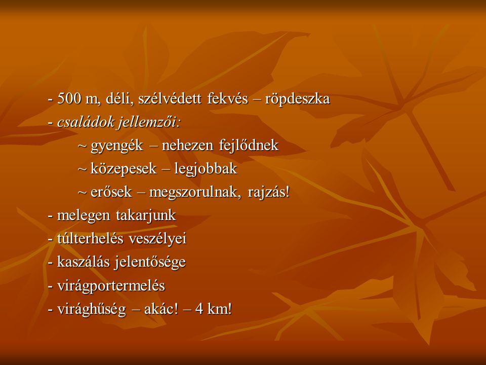 - 500 m, déli, szélvédett fekvés – röpdeszka - családok jellemzői: ~ gyengék – nehezen fejlődnek ~ közepesek – legjobbak ~ erősek – megszorulnak, rajz
