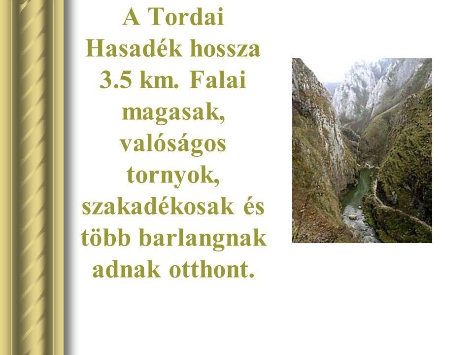 A Tordai Hasadék hossza 3.5 km.