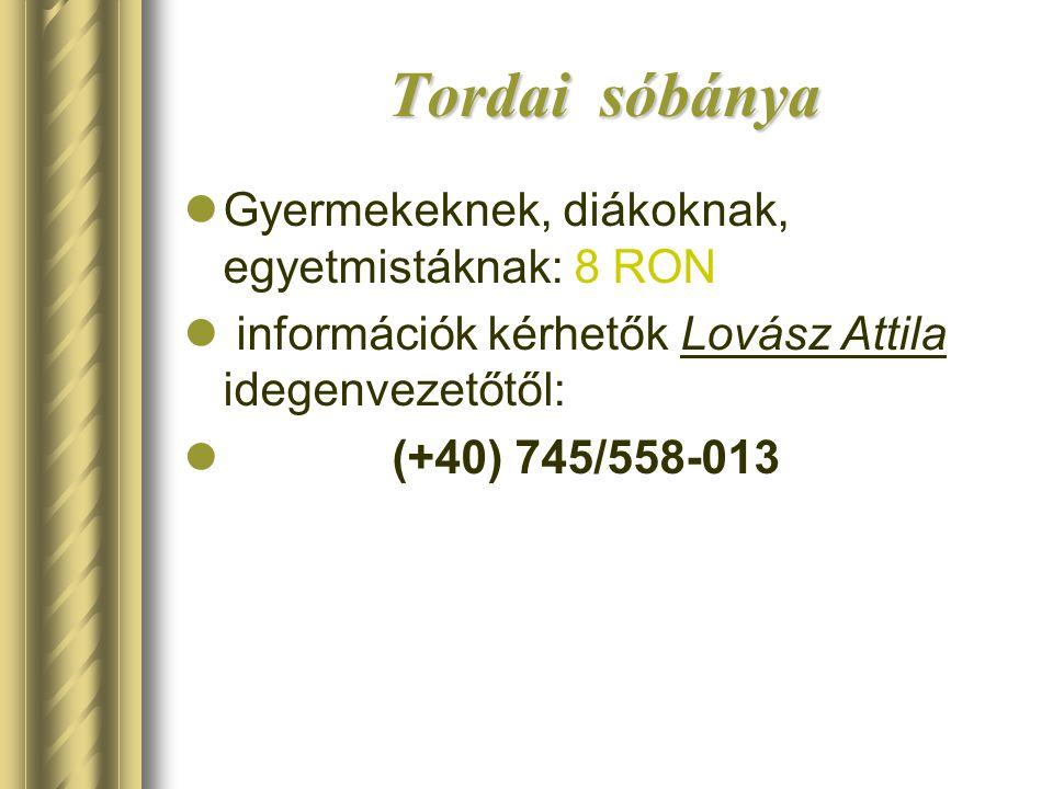 Tordai sóbánya  Gyermekeknek, diákoknak, egyetmistáknak: 8 RON  információk kérhetők Lovász Attila idegenvezetőtől:  (+40) 745/558-013