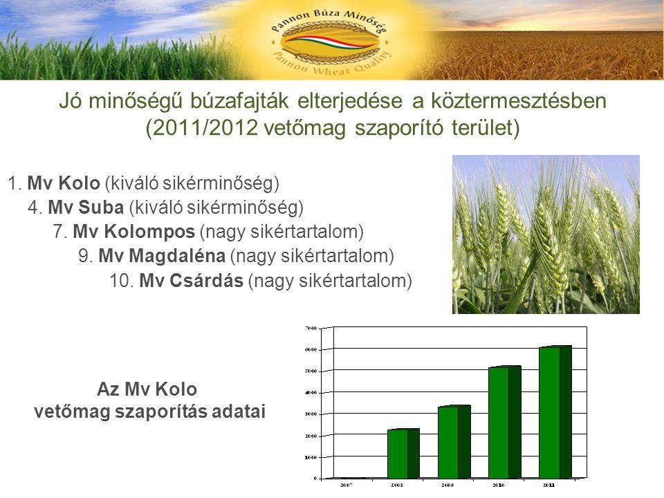 Jó minőségű búzafajták elterjedése a köztermesztésben (2011/2012 vetőmag szaporító terület) 1. Mv Kolo (kiváló sikérminőség) 4. Mv Suba (kiváló sikérm