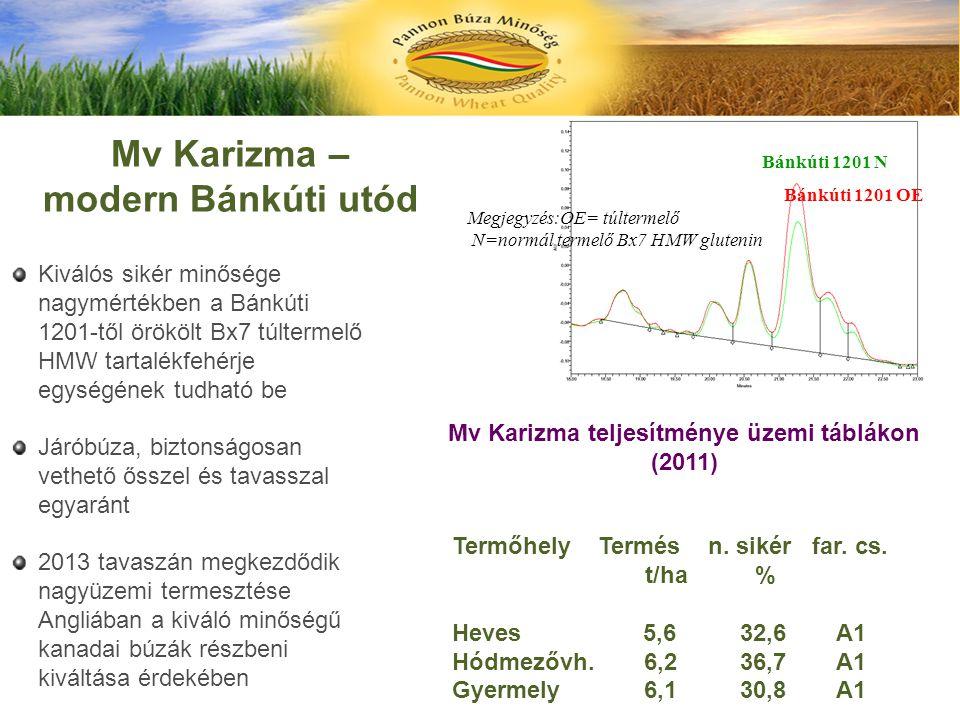 Bánkúti 1201 OE Bánkúti 1201 N Megjegyzés:OE= túltermelő N=normál termelő Bx7 HMW glutenin Mv Karizma – modern Bánkúti utód Kiválós sikér minősége nag