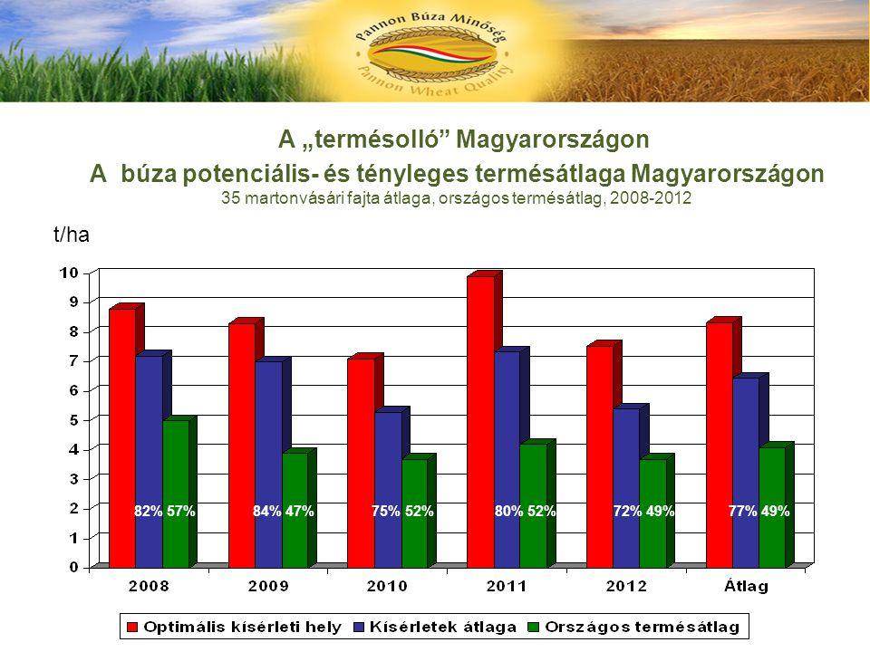 """A """"termésolló"""" Magyarországon A búza potenciális- és tényleges termésátlaga Magyarországon 35 martonvásári fajta átlaga, országos termésátlag, 2008-20"""