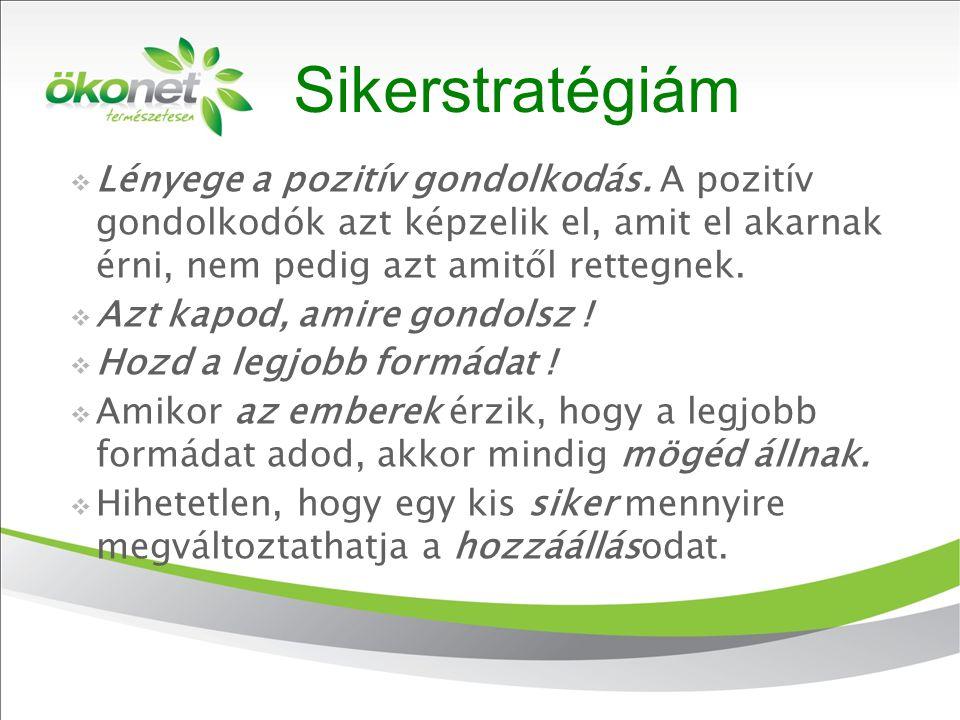 2010. 9. 8. Sikerstratégiám  Lényege a pozitív gondolkodás. A pozitív gondolkodók azt képzelik el, amit el akarnak érni, nem pedig azt amitől rettegn