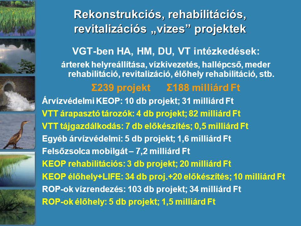 """Rekonstrukciós, rehabilitációs, revitalizációs """"vizes projektek VGT-ben HA, HM, DU, VT intézkedések: árterek helyreállítása, vízkivezetés, hallépcső, meder rehabilitáció, revitalizáció, élőhely rehabilitáció, stb."""