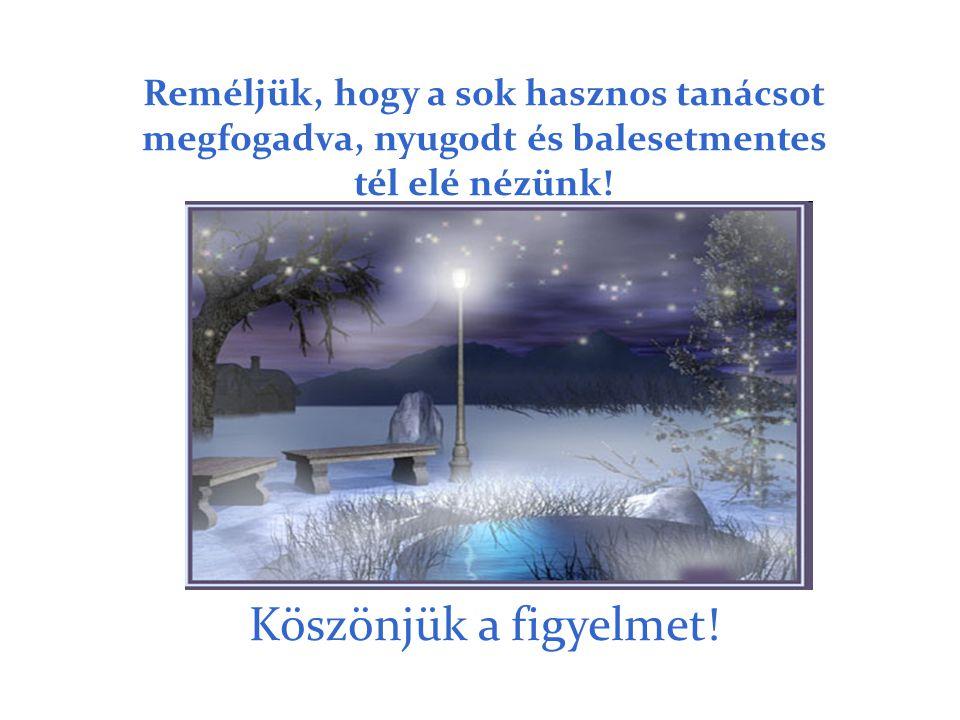 Reméljük, hogy a sok hasznos tanácsot megfogadva, nyugodt és balesetmentes tél elé nézünk! Köszönjük a figyelmet!