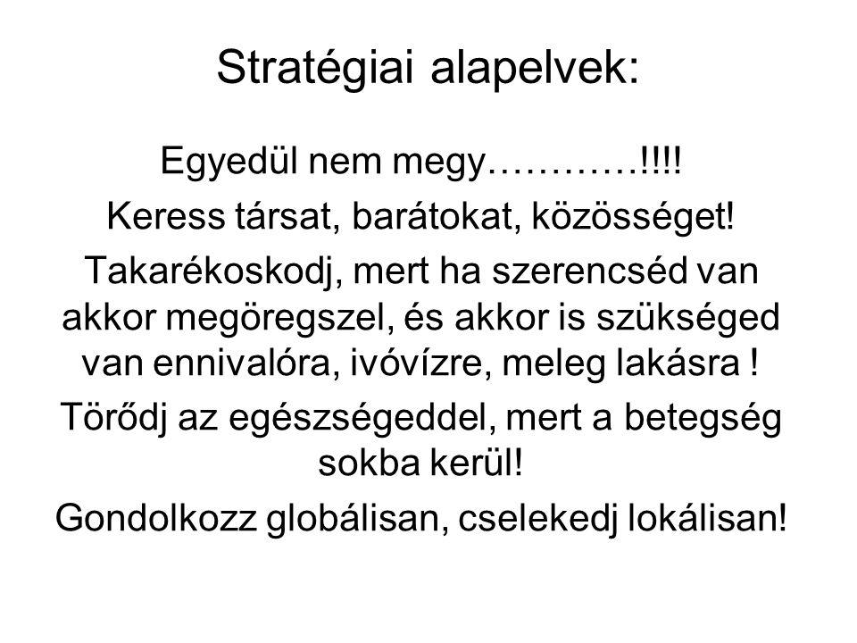 Stratégiai alapelvek: Egyedül nem megy…………!!!! Keress társat, barátokat, közösséget! Takarékoskodj, mert ha szerencséd van akkor megöregszel, és akkor