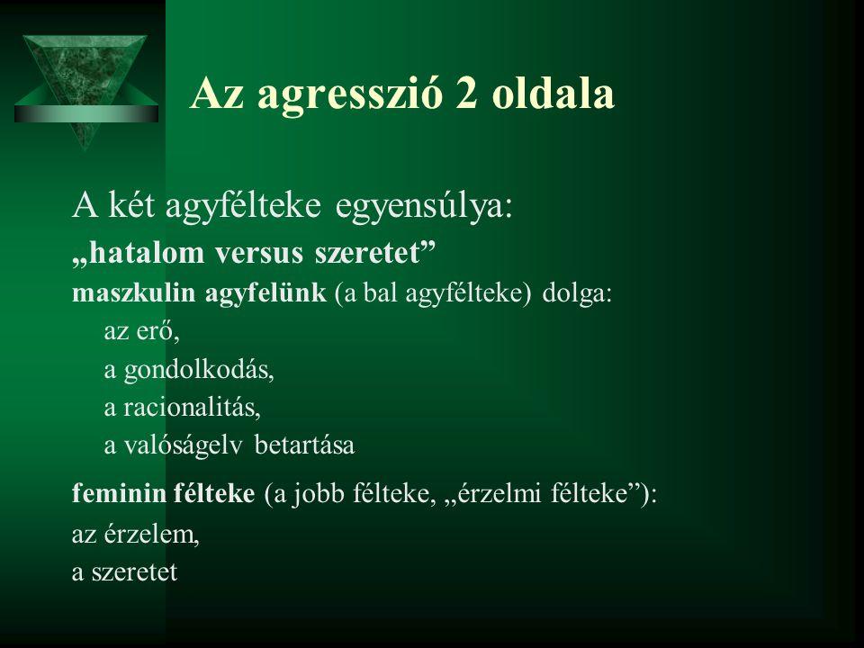 """Az agresszió 2 oldala A két agyfélteke egyensúlya: """"hatalom versus szeretet"""" maszkulin agyfelünk (a bal agyfélteke) dolga: az erő, a gondolkodás, a ra"""