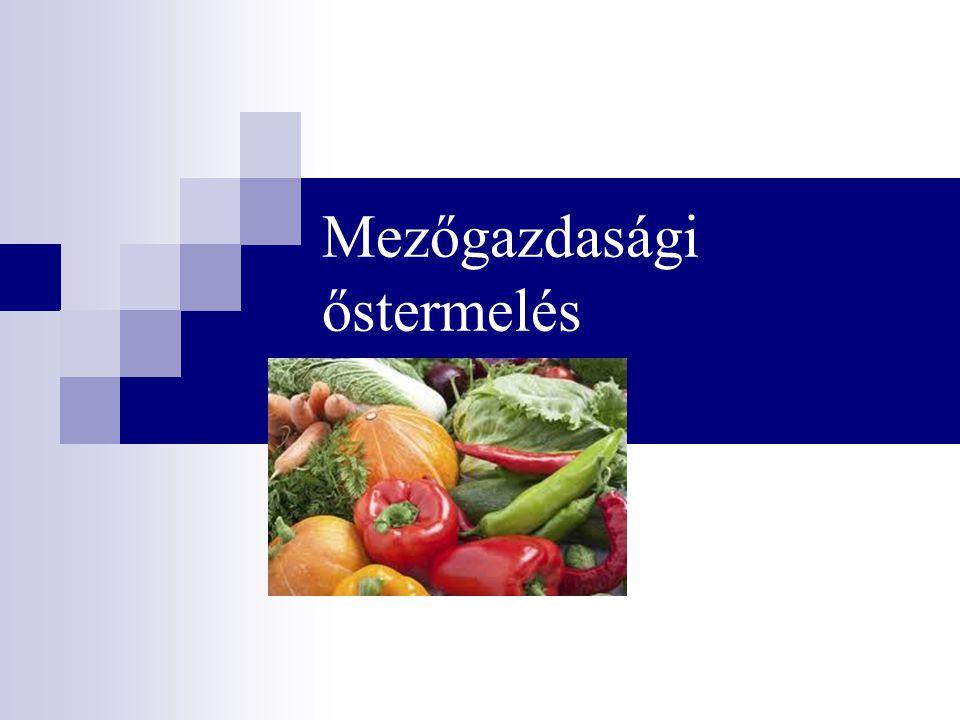 A mezőgazdasági kistermelő nemleges nyilatkozata és az EHO  A mg.
