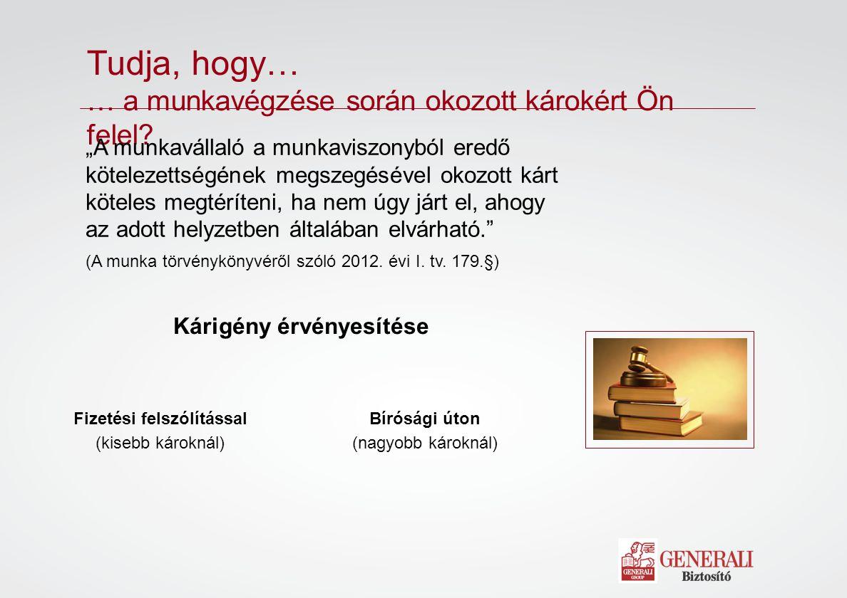 Munkajogi jogvédelem Jogi tanácsadás  Munkaviszonyának megszüntetése esetén azonnali jogi tanácsadás telefonon.