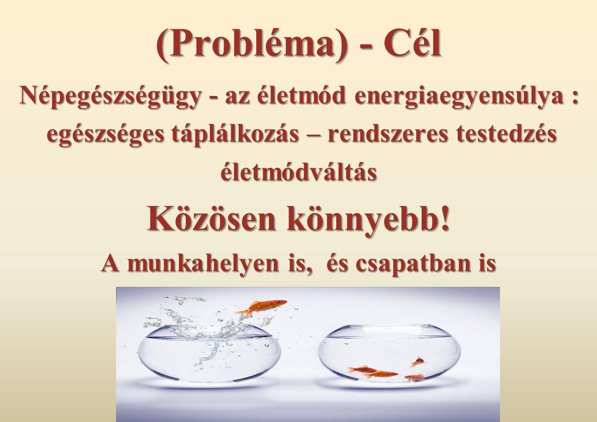 (Probléma) - Cél Népegészségügy - az életmód energiaegyensúlya : egészséges táplálkozás – rendszeres testedzés egészséges táplálkozás – rendszeres testedzéséletmódváltás Közösen könnyebb.