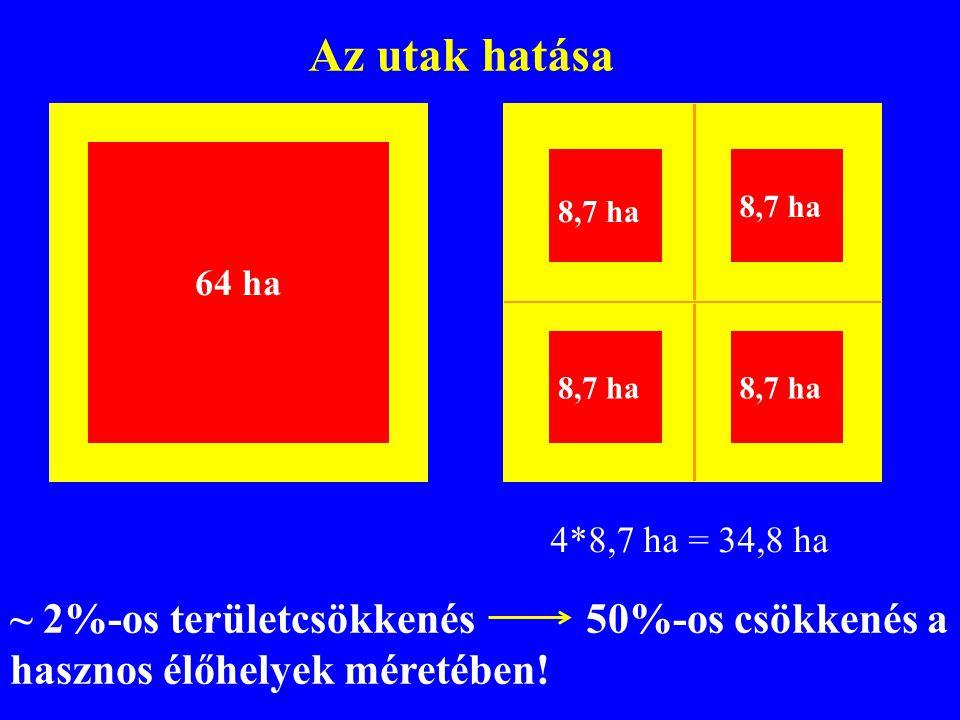 8,7 ha 64 ha 8,7 ha 4*8,7 ha = 34,8 ha ~ 2%-os területcsökkenés 50%-os csökkenés a hasznos élőhelyek méretében! Az utak hatása