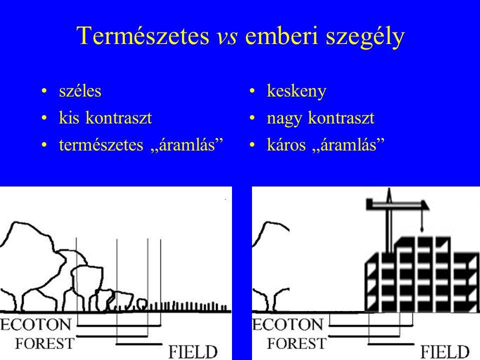 Szegélyhatás: abiotikus és biotikus paraméterek változása két élőhely között •általában nagyobb abu.
