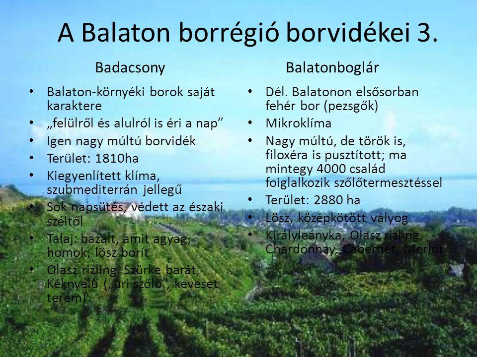 """BadacsonyBalatonboglár • Balaton-környéki borok saját karaktere • """"felülről és alulról is éri a nap"""" • Igen nagy múltú borvidék • Terület: 1810ha • Ki"""