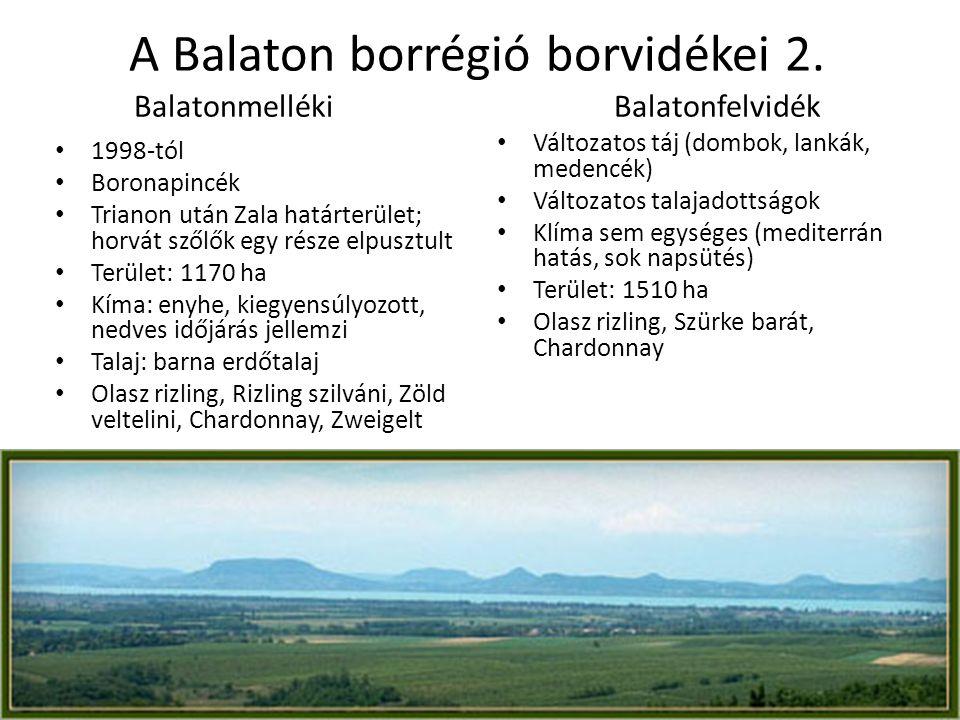 Balatonmelléki Balatonfelvidék • 1998-tól • Boronapincék • Trianon után Zala határterület; horvát szőlők egy része elpusztult • Terület: 1170 ha • Kím
